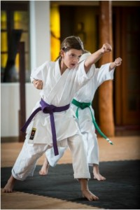 Mountainside Martial Arts - Ahwatukee, AZ
