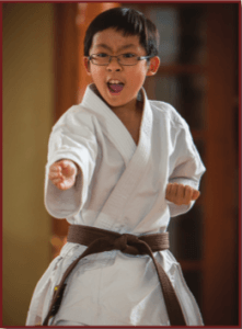 Mountainside Martial Arts Introductory Karate Classes