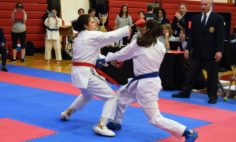 Mountainside Martial Arts Center - karate classes - 1