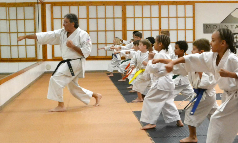 Mountainside Martial Arts Center - karate classes - 2
