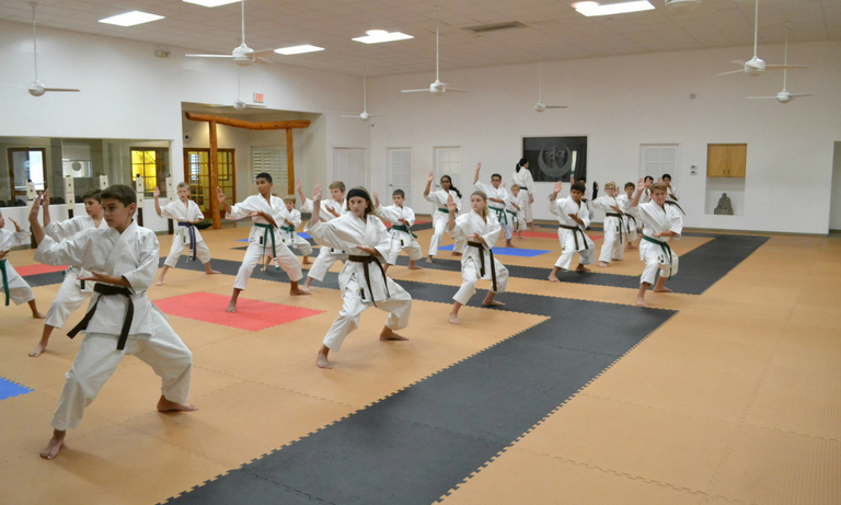 Mountainside Martial Arts Center - karate classes - 3