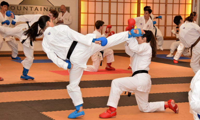 Mountainside Martial Arts Center - karate classes - 5