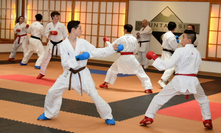 Mountainside Martial Arts Center - karate classes - 6