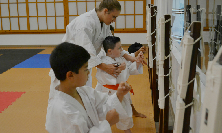 Mountainside Martial Arts Center - karate classes - 7