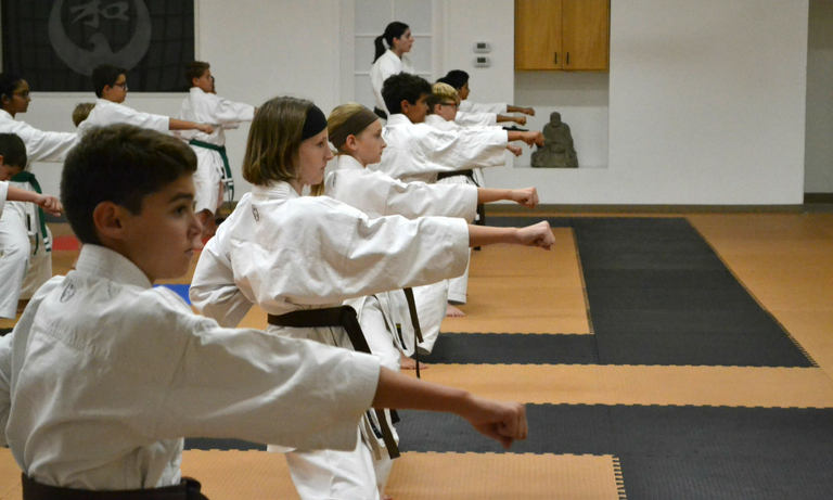 Mountainside Martial Arts Center - karate classes - 8