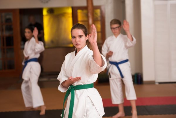 2018_11_06_Mountainside Martial Arts Belt Testing-1176