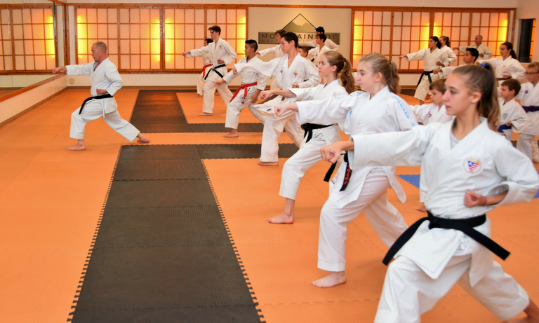 Mountainside Martial Arts Center - karate classes - 4