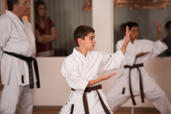 2018_11_06_Mountainside Martial Arts - Development az
