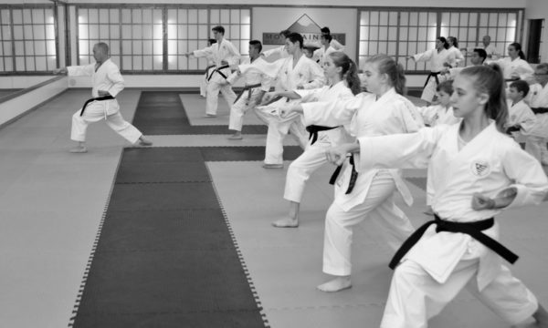 Mountainside-Martial-Arts-Center-Martial Arts Classes