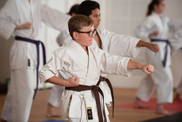 Mountainside_Martial_Art_Younger Brown Belts
